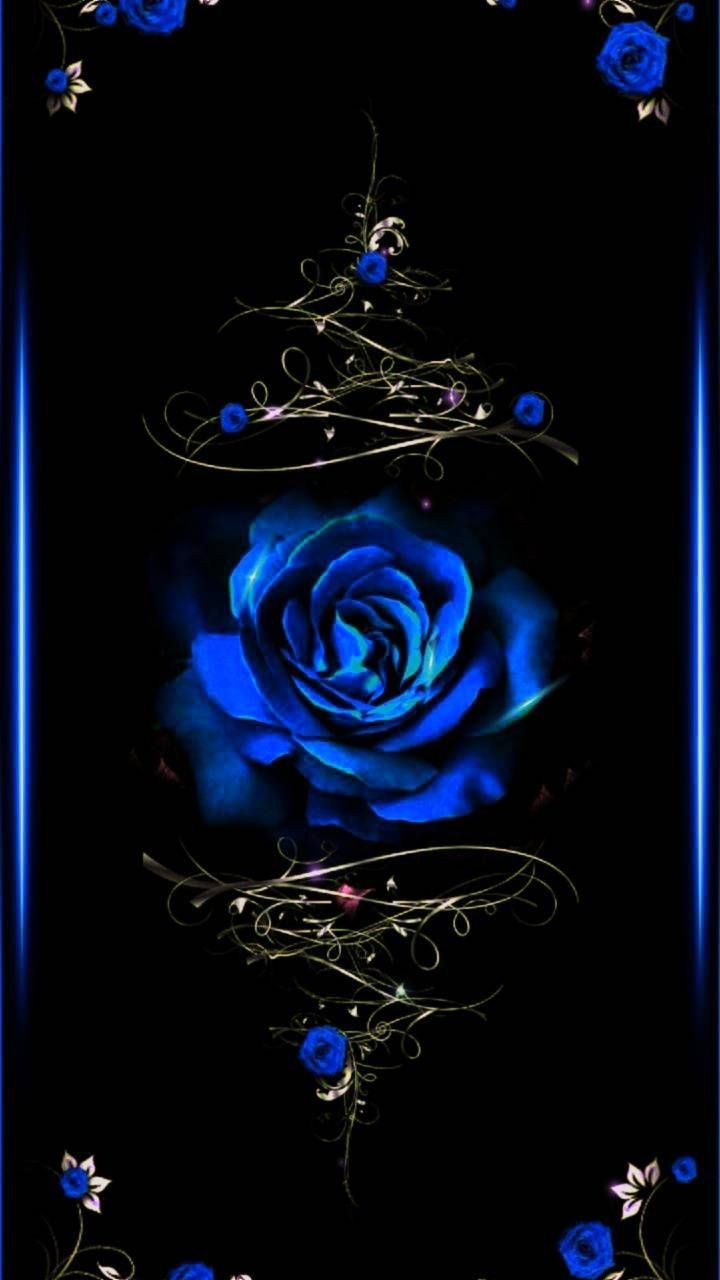 Pin By Fridas Cat On Roses Blue Roses Wallpaper Rose Wallpaper Black And Blue Wallpaper