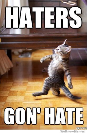 LOLGonna Hate, Like A Boss, Walks, Funny Cat, Haters Gonna, Funny Stuff, Funny Animal, Kitty, Likeaboss