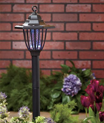 Elegant Solar Bug Zapper Turns Your Dark Yard Into A Spot To Enjoy A Summer  Evening. Stake It Near A Patio, Or Hang It From An O