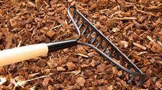Achten Sie darauf, dass vor dem Aufbringen der Mulchschicht vorhandenes Unkraut restlos entfernt wurde.