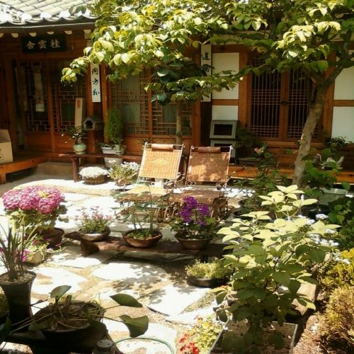 Courtyard: Bukchon Hanok Village, Seoul, Korea