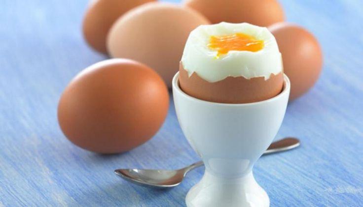 #El huevo es un tesoro que puede ayudar a combatir problemas de desarrollo infantil - La Gaceta Tucumán: La Gaceta Tucumán El huevo es un…