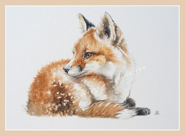 Renard Aquarelle Watercolor Fox Fox Painting Fox Artwork