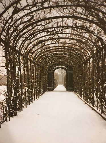 Tunnel at Schonbrunn. From A Taste of Viennese Christmas