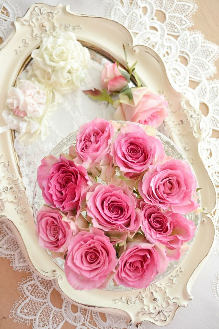 best 25 pink rose flower ideas on pinterest pink roses