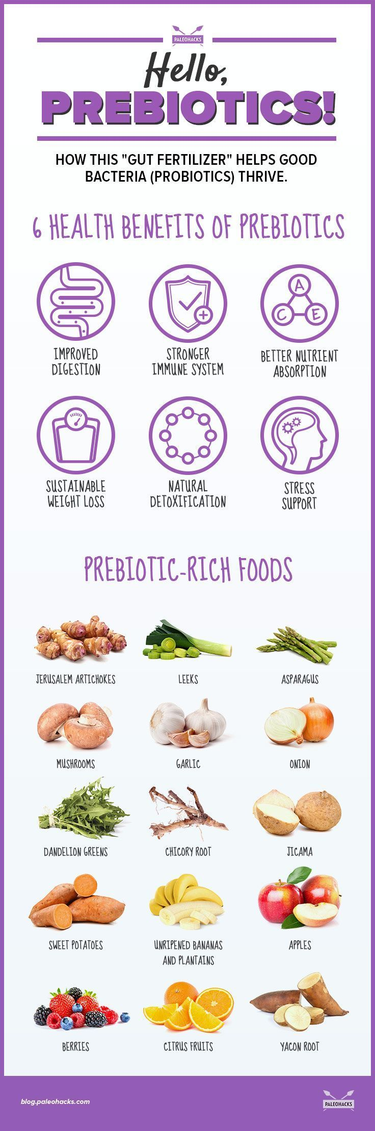 Don't forget to feed the good bacteria in your gut! For the full article on prebiotics, visit us here: http://paleo.co/prebioticsbenefits
