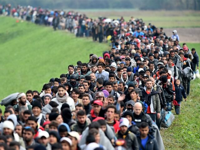 Europe has barely even seen the start of the migrant influx, Germany's Development Minister has warned.