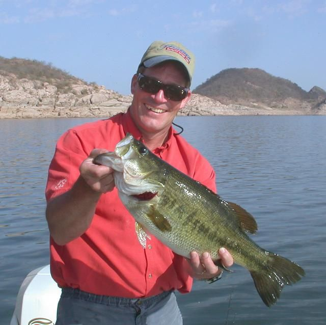 Facts About the Life and Behavior of Largemouth Bass