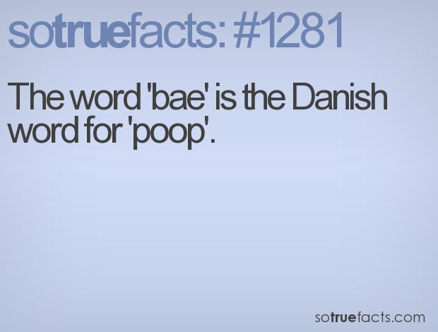 "The word 'bae' is the Danish word for 'poop'. HAA to all of you that use ""bae"" for babe. dummies."