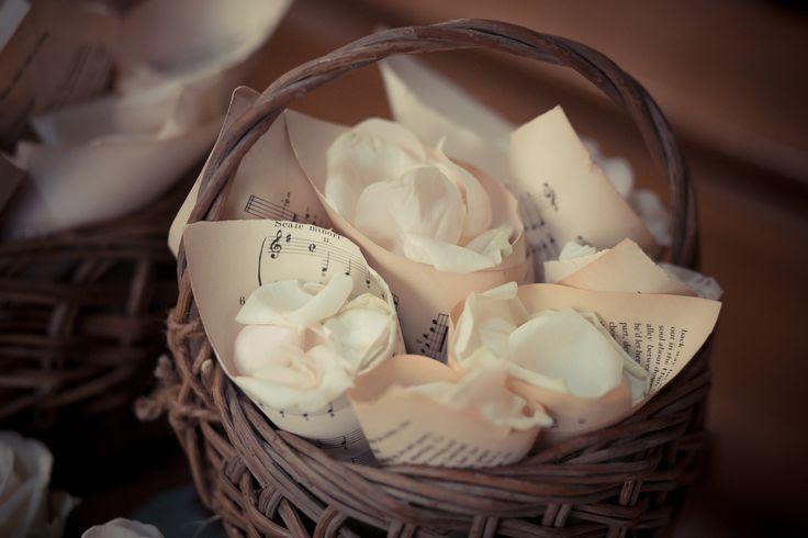 Cones with rose petals