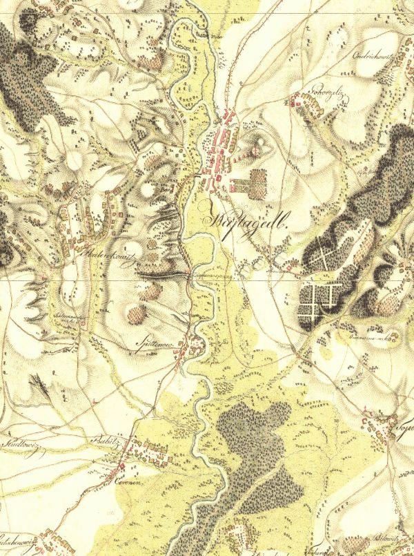 Pohled na nezregulovanou řeku Moravu pod Napajedly.