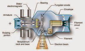 Internal Components of X-ray Tube (Anode) - RadTechOnDuty