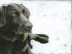 """Black Lab titled """"Content"""".  Original acrylic painting by Angie Carrier"""