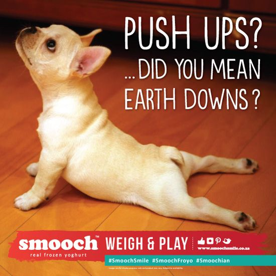eating clean got a whole lot easier with smooch froyo!... and who doesnt love a pug meme!
