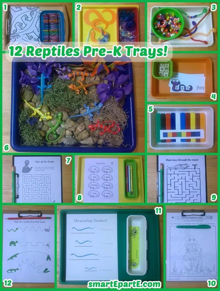 12 Reptiles Preschool Trays!