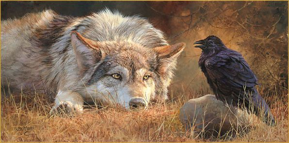 White Wolf: Bonnie Marris - wildlife artist of stunning realism.