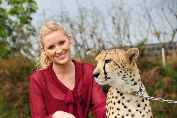 Pet a cheetah at Australia Zoo  #airnzsunshine