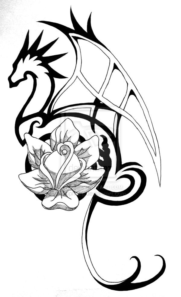 dragon tattoo drawings | Dragon Rose Tattoo by Ziphora on deviantART