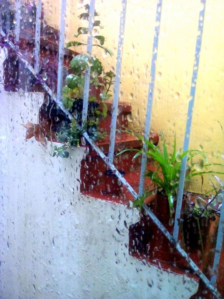 Llueve en el taller