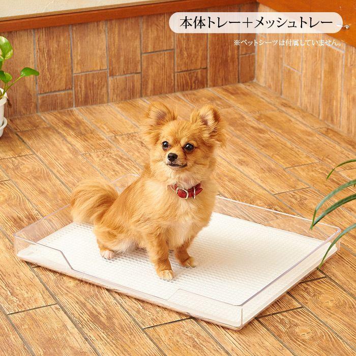 お部屋のインテリアを損なわない透明なトイレトレー 犬用トイレ クリアレット レギュラー 本体トレー メッシュトレー 送料無料 北海道 沖縄 離島を除く 犬 ペット 犬の部屋