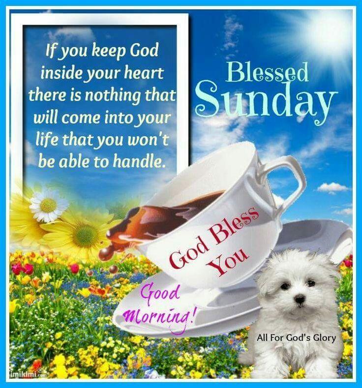 Blessed Sunday weekend sunday sunday morning sunday greeting sunday blessings sunday quote