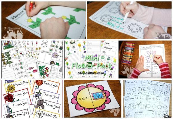 30 + flor Imprimibles y Actividades de 3 dinosaurios - una mezcla de dibujos, manualidades, pintura, contenedores sensoriales y más - 3Dinosaurs.com