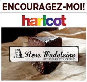 crowfunding - sociofinancement Un livre de pâtisseries végétaliennes québécois - Vegan baking book
