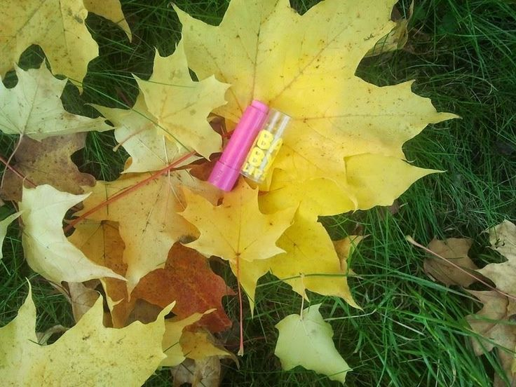Maybelline Baby Lips Balm, Pink Punch   Joanna's cosmetics