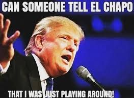donald trump memes - Google Search
