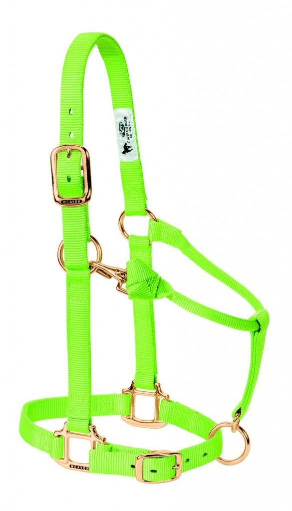 Low Price Horse Supplies, English and Western Saddles, Horse Riding Tack | HorseLoverz.com