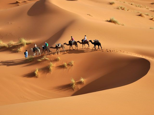 Voyage au coeur du désert tunisien