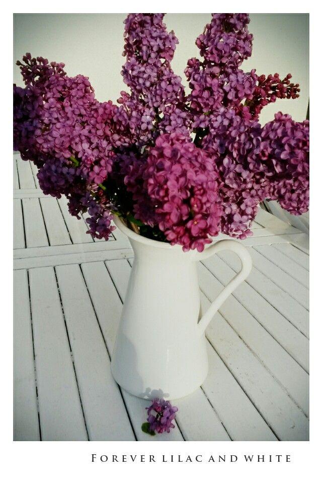We love spring flowers
