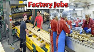 Factory Worker  About the business  Our Upper Moutere based company grows and processes salads.  About the role  The factory roles are in...