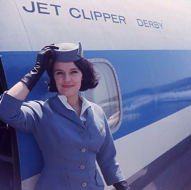 161 best Flight attendant images on Pinterest Flight attendant - british airways flight attendant sample resume