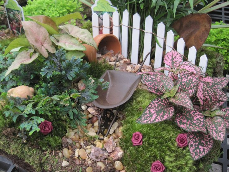 613 Best Images About Diy Fairy Gardens On Pinterest