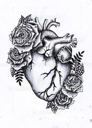 Anatomical Heart Tattoo ❥❥❥ https://tattoosk.com/anatomical-heart-tattoo-2#261