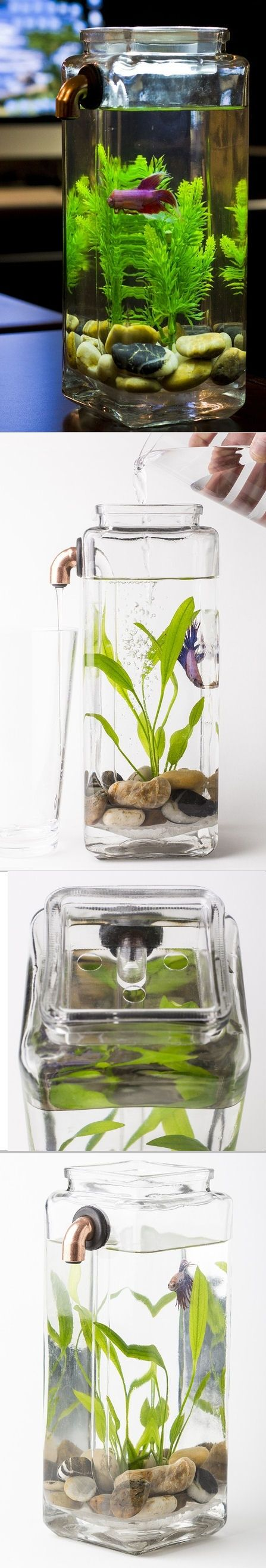 Self Cleaning Betta Aquarium -  Simply pour fresh water in, and dirty water is expelled through a tube and out of the tank while your fish swims happily within. There are no filters, batteries, or cords.