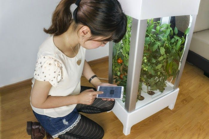 Collection of 'Coolest Gadgets For Your Kitchen Garden' from all over the world for you to grow herbs and vegetables.