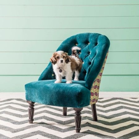 Brielle Blue Anyi Print Chair | Chairs | Graham and Green