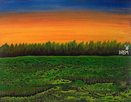 Tranquil Meadow by David Manicom