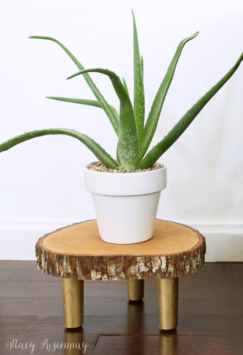 Wood Slice Plant Stand | Not JUST A Housewife