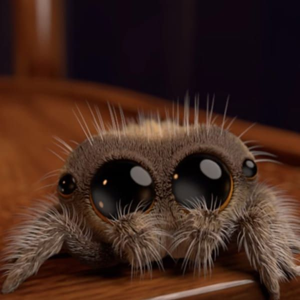 Adorable Animated Spider Named Lucas Is So Cute Even Arachnophobes Will Smile Animated Spider Cute Baby Animals Cute Animals