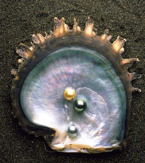 On the half-shell
