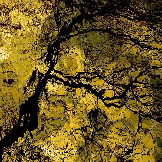 My Wild River Reflection…!!!    El arte sacude del alma el polvo acumulado en la vida diaria…!!!  PABLO PICASSO    Art washes away from the soul the dust of everyday life…!!!    L'art enlève la poussière accumulée durant la vie de tous les jours…!!!    L'arte http://timemart.vn/  http://timemart.vn/305/p/430035/tranh-theu-chu-thap.html