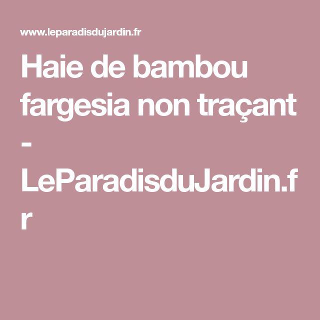 Haie de bambou fargesia non traçant - LeParadisduJardin.fr