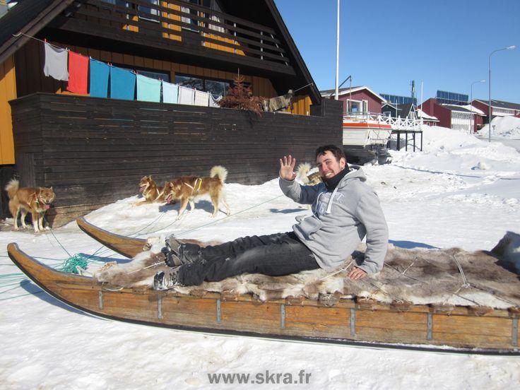 Arrivée en chiens de traineaux à Sisimiut, Groenland