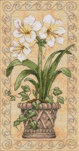 Dimensions Needlecrafts Counted Cross Stitch  Amaryllis In Bloom: http://www.amazon.com/Dimensions-Needlecrafts-Counted-Stitch-Amaryllis/dp/B000W5FTZE/?tag=greavidesto05-20