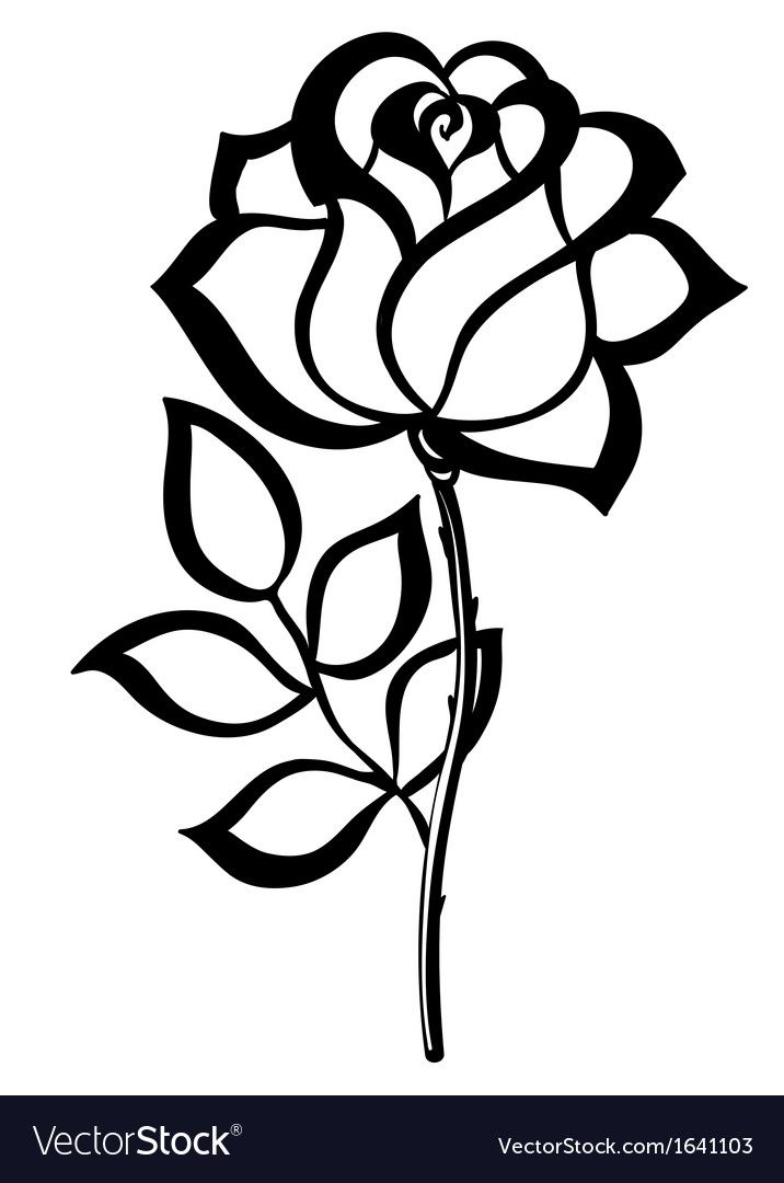 Black silhouette outline rose isolated on white vector image on VectorStock | Rose stencil ...