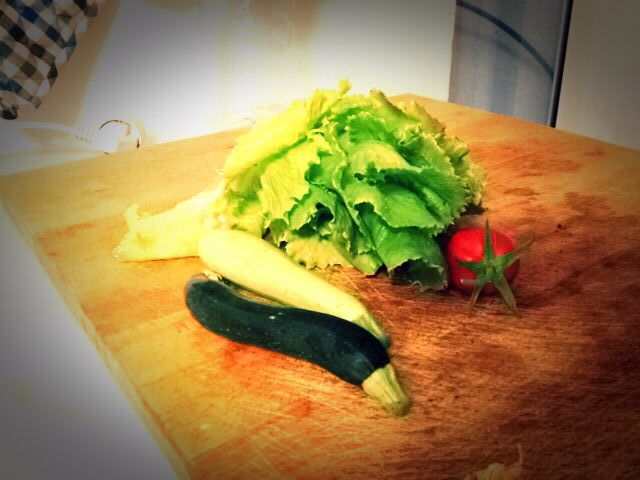 #Orto/raccolto #G.vegetablegarden #ortointerrazza #piccoliortidomesticicrescono #ortocapovolto #ortopallet