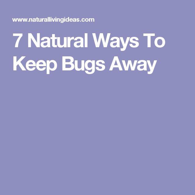 7 Natural Ways To Keep Bugs Away